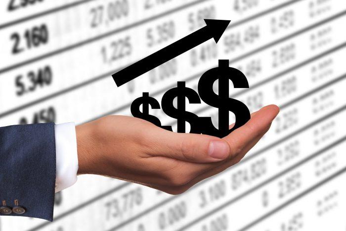 karrieredzo dollar profit